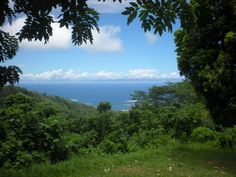 The view from Robert Louis Stevenson's grave in Western Samoa