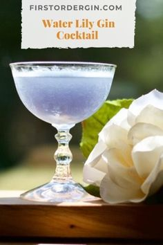 Non Alcoholic Cocktails, Gin Cocktail Recipes, Frozen Cocktails, Wine Cocktails, Holiday Cocktails, Orange Punch, Gin Joint, Gin Lemon, Gin Brands