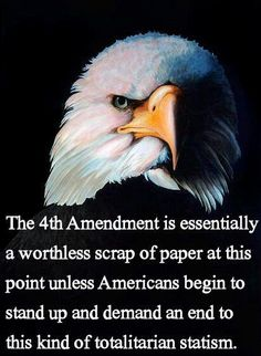 They have been doing a bait and switch lately with second amendment so they can steal the 4th.