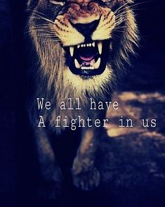 #lion #fighter