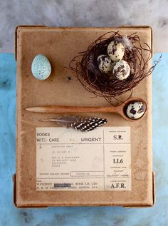 Love bird's nests. I'd put them everywhere, esp on the  Christmas tree as an tree ornament/accent. This one is homemade. Follow the link for info.
