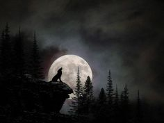 wolf silhouette tattoo - In The Night between 23 and 24 January, The Moon Will Become a WOLF MOON Turning Point for Many People Wolf And Moon Tattoo, Wolf Tattoos, Dark Fantasy Art, Dark Art, Wolf Howling At Moon, Natur Tattoos, Wolf Silhouette, Wolf Artwork, Wolf Painting