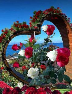 Pics For Dp, Floral Wreath, Wreaths, Home Decor, Floral Crown, Decoration Home, Door Wreaths, Room Decor, Deco Mesh Wreaths
