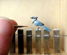 Blue Jay by Beth Freeman-Kane