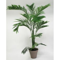 1000 images about plantes exotiques artificial exotic for Palmier artificiel interieur
