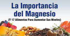 Aquí está una lista de alimentos ricos en magnesio y sus fuentes que su cuerpo necesita para prevenir la deficiencia de magnesio. http://articulos.mercola.com/sitios/articulos/archivo/2016/04/11/alimentos-ricos-en-magnesio.aspx
