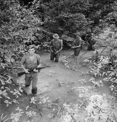 British troops on the move.THE MALAYAN EMERGENCY 1948-1960 | Imperial War Museums