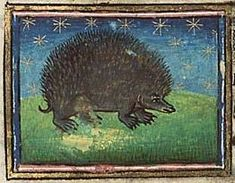 150 best images about ancient, antique, & vintage hedgehogs on ...