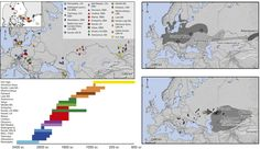 Population genomics of Bronze Age Eurasia