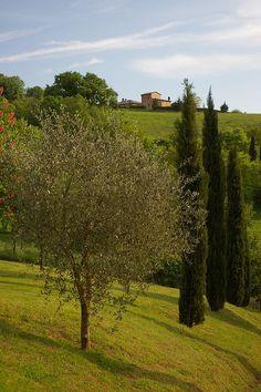 Todi...Umbria , Italy