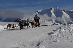 """Mushing - Este mes vamos a conocer un medio de transporte de perros sobre nieve que acabó convirtiéndose en una competición en la que perros y deportistas aúnan esfuerzos para salvar recorridos sobre suelos nevados, el """"Mushing""""."""