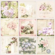 flowers 2014 by odile lm