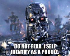 Terminator Robot T-800