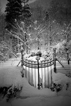 winter snow ~ love that gate ~ leads right to a winter wonderland Winter Szenen, I Love Winter, Winter Magic, Winter White, Winter Christmas, Vermont Winter, Merry Christmas, Christmas Heaven, Cottage Christmas