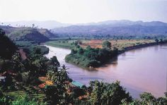 The Mekong River runs through China's Yunnan province, Burma, Laos, Thailand, Cambodia and Vietnam. Thailand Travel, Asia Travel, Laos Thailand, Nepal, Student Tours, Sea Level Rise, Golden Triangle, Travel Memories, Day Trip