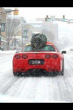 It's a Corvette Kind of Christmas Chevrolet Corvette C4, Chevy, Christmas Car, Christmas Ideas, Xmas, Corvette Summer, Classic Corvette, Gm Car, Corvette Convertible
