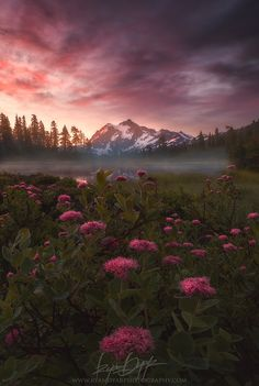 Shuksan Mountain Sunrise - Washington