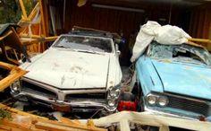 Sandy survivors classic cars