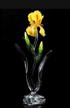 yellow-iris-full-13-hughes.jpg 547×840 pixels