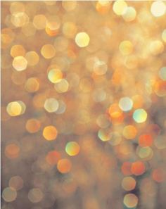 Gold and gold. Photograph Spangeld by drop it MODERN, gold sequin backdrop, out of focus and get this dreamy look.