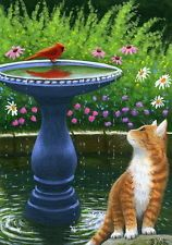 Orange tabby cat bird bath garden landscape limited edition aceo print art