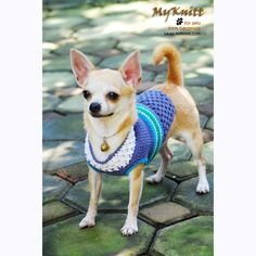 crocheted chihuahua outfits clothes summer by myknitt #blue #turquoise #summer #myknitt #crochet