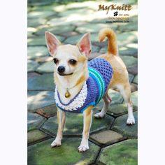 crocheted chihuahua outfits clothes summer by myknitt #blue #turquoise #summer #myknitt #crochet