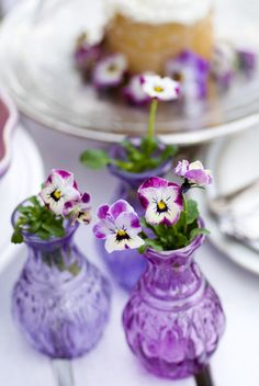 purple vases and violets. these make me happy because my grandmother grew violets when I was a very little girl and I will always remember her when I see them. <3