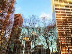Buildings. NYC.