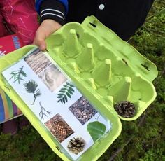 """The post """"Also love this idea of using the egg carton not only for collecting nature walk findings, but also for a nature scavenger hunt list and collection container in one"""" appeared first on Pink Unicorn activities Wedding Forest School Activities, Nature Activities, Summer Activities, Learning Activities, Preschool Activities, Camping Activities, Outdoor Education, Outdoor Learning, Home Learning"""