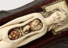 Victorian anatomical model