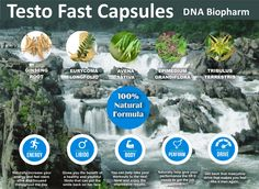 Masculine Energy, Dna, Herbalism, Nature, Plants, Products, Herbal Medicine, Naturaleza, Plant