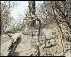 Richard Misrach: After the Oakland Hills Fire 1991