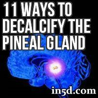 This how-to list will give you a reference point for exercises and ways to help with pineal gland decalcification.