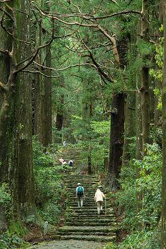 Kumano Kodo, steps to the 3 sacred shrines, Kumano Sanzan.  Wakayama, Japan. ~