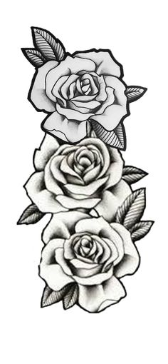 Roses / roses / overlay / graphic / tattoo / 3 roses / three roses / sleeve / arm / lines / rows 3 Roses Tattoo, Rose Tattoo Stencil, Rose Drawing Tattoo, Skull Tattoo Flowers, Rose Flower Tattoos, Rose Tattoos For Men, Black Rose Tattoos, Tattos Maori, Forarm Tattoos