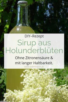 Holunderblütensirup Rezept Make a delicious recipe for holler syrup yourself. Free from citric acid and particularly long-lasting when bottled appropriately. Baileys Cocktails, Prosecco Cocktails, Vodka Drinks, Refreshing Cocktails, Summer Drinks, Healthy Eating Tips, Clean Eating Snacks, Elderflower Syrup Recipe, Banana Milkshake