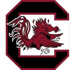 NCAA South Carolina Gamecocks College Logo Wallmarx Accent