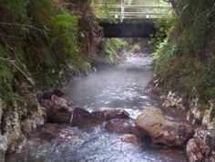 The Bridge (aka The Secret Spot, aka HotnCold), Waiotapu Stream :: Donated by Richard Phelps :: Labour Weekend 2006 Pictures Images, Hot Springs, What Is Like, Day Trips, Great Places, Pools, New Zealand, The Secret, Waterfall