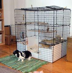 I'm going to build this! Diy Bunny Cage, Bunny Cages, Rabbit Cages, Rabbit Life, Pet Rabbit, Rabbit Habitat, Rabbit Enclosure, Chinchillas, Bunny Room