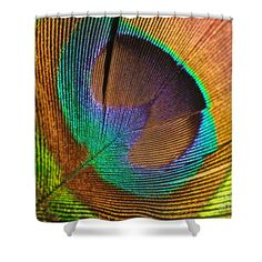Eye of the Peacock Shower Curtain by Kaye Menner