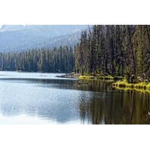 Silven Lake Yellowstone Print Image