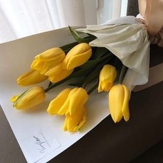 Yellow tulips love so pretty flowers Plant Aesthetic, Flower Aesthetic, Aesthetic Light, Aesthetic Grunge, My Flower, Flower Power, Cactus Flower, Yellow Aesthetic Pastel, Orange Aesthetic