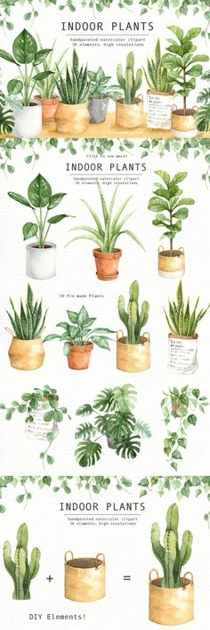 The set of high quality hand painted watercolor indoor plants and plant pots images. A fiddle leaf fig, snake plant, cactus and other animal illustrations are included in this set. Included 10 beautiful pre-made indoor plants with pots. Perfect for wedding invitations, greeting cards, quotes, posters, logo, blogs and DIY. Ad #graphicdesign #plants #watercolor