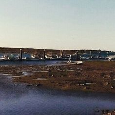 Vamos pescar em Cabanas #goldencabanas #Tavira #algarve