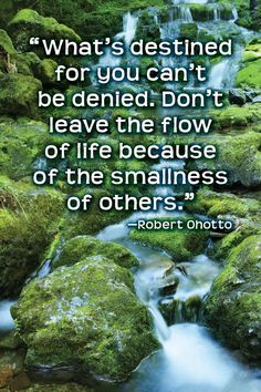 """""""What's destined for you can't be denied.  Don't leave the flow of life because of the smallness of others."""" ~ Robert Ohotto (www.ohotto.com)"""
