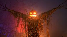 Halloween Outside, Halloween Eve, Halloween Scarecrow, Halloween Magic, Halloween Themes, Haunted Halloween, Favorite Holiday, Holiday Fun, Facebook Cover Images