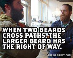When two beards cross paths, the larger beard has the right of way. Beard bearded man men humor