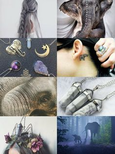 "Animal Witch Aesthetics // Elephant Witch ""Requested "" Bird Witch 
