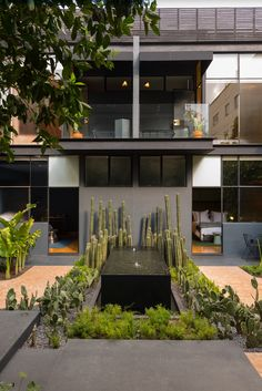 A 1913 Mexico City Mansion Renovation + a Modern Guest House - Design Milk - FeedInspire Modern Tiny House, Modern Mansion, Modern Backyard, Modern Landscaping, Large Backyard, Modern Pools, Open Layout, Neoclassical, Architecture Design